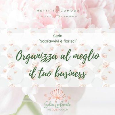 """Come organizzare al meglio il tuo business – Serie """"Sopravvivi e fiorisci"""" [MC #28]"""